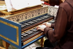 5.2017 Anne A hands and harpsichord nice shot
